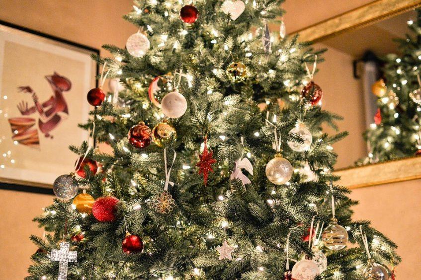 christmas-tree-1081981_960_720-2