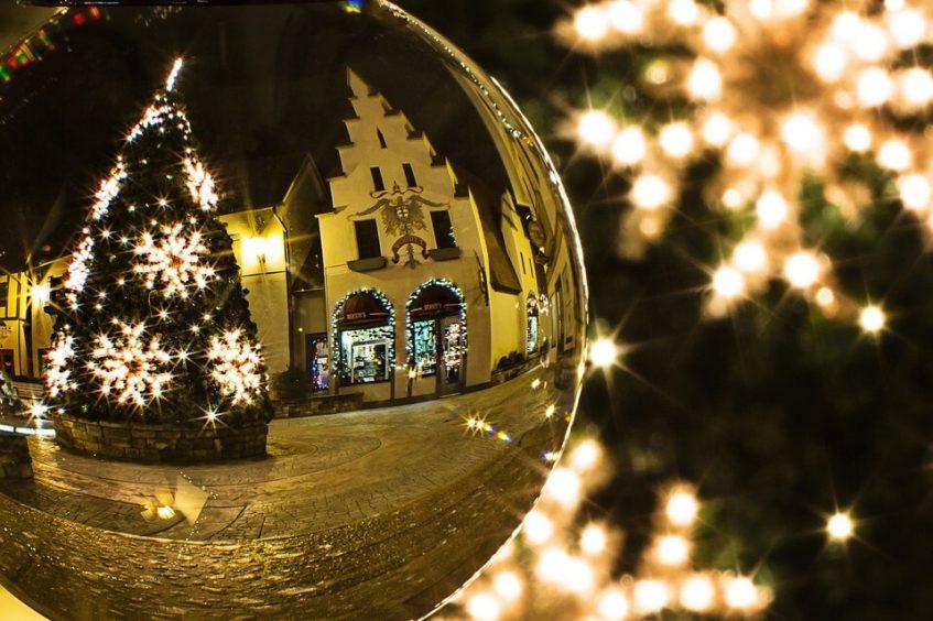 christmas-tree-573198_960_720-2